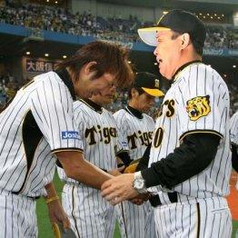 2位巨人と五輪で嫌な予感よぎるが…今年の阪神は2008年とは大きくちがう
