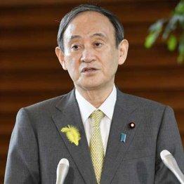 まだあきらめないのか 菅首相の選択肢は五輪中止か総辞職