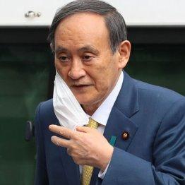 8.8から始まる「菅降ろし」はもう止まらない…横浜市長選がトドメ