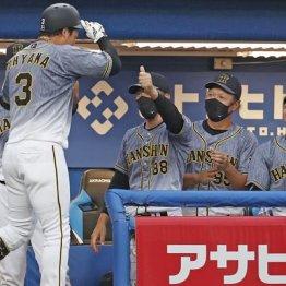 阪神・矢野監督の来季続投は既定路線?いやいやV逸ならクビだってある!それか虎の歴史