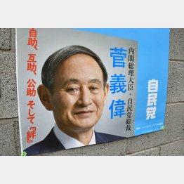 """選挙の""""顔""""にならない…(C)日刊ゲンダイ"""