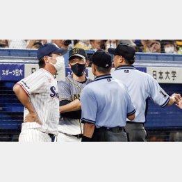 矢野監督(左2)が高津監督(左)を怒鳴りつけるシーンも(C)共同通信社
