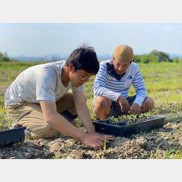 自然栽培農園(提供写真)