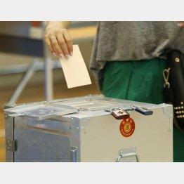「選挙割」で投票率アップ(C)日刊ゲンダイ