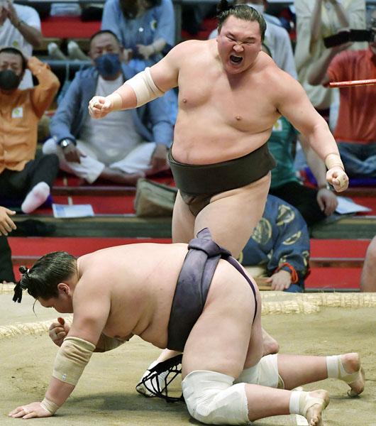 小手投げで照ノ富士を下し、雄たけびを上げる白鵬(C)共同通信社