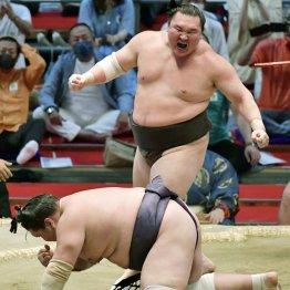 白鵬45回目Vで現役続行示唆も品格ゼロ! 相撲協会激怒で親方株「継承不認可」が急浮上