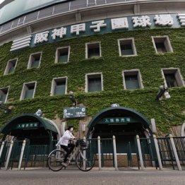 鳥取大会辞退から一転…出場を認められた米子松蔭にもダメージあり