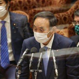 菅政権のワクチン政策はデタラメ続き 縁故企業へのばらまきを許すな