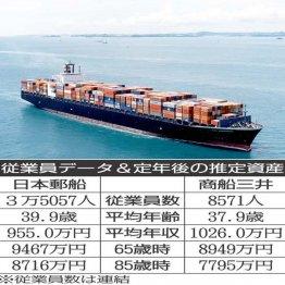 日本郵船×商船三井 荷動きが活発化している海運大手を比較