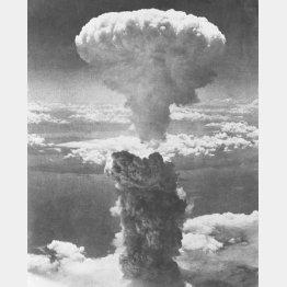 長崎に投下された原爆のキノコ雲(1945年8月9日)/(C)共同通信社