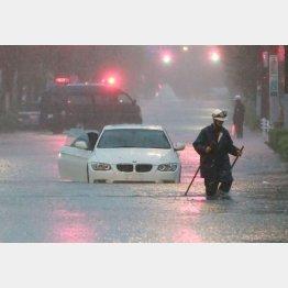 道路の冠水も頻繁に起きる(C)日刊ゲンダイ