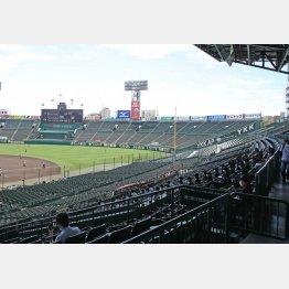 無観客といっても「ふるさと応援団」1試合当たり計4000人は入場可(C)日刊ゲンダイ