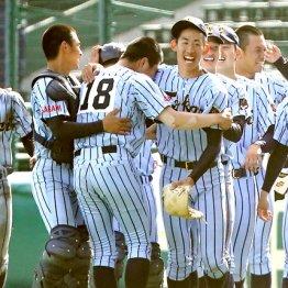 横浜が150キロ打撃マシンを購入するきっかけは東海大相模のNo.1投手