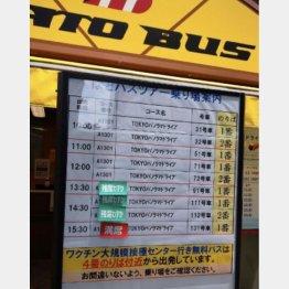 はとバスも人気(写真)元川悦子