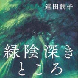 「緑陰深きところ」遠田潤子著