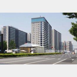 現・選手村の「晴海フラッグ」/(C)日刊ゲンダイ