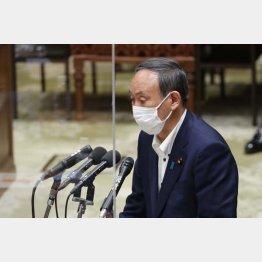"""菅首相の""""スガオ""""に迫った(C)日刊ゲンダイ"""