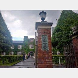 大学卒業までに少なくとも2000万円の費用がかかる(提供写真)