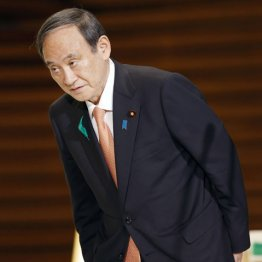 新型コロナウイルス対策がメチャクチャでは夢物語…(菅首相)/