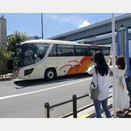 「入り待ち」する女性ファン(写真)元川悦子