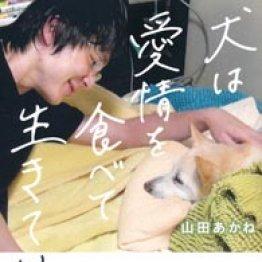 「犬は愛情を食べて生きている」山田あかね著