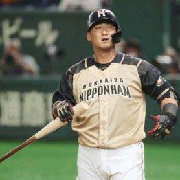 日本ハム中田翔「暴力事件」一部始終とその深層 後輩投手の顔面にこうして拳を振り上げた