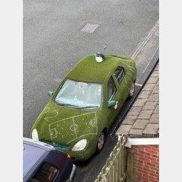 毎朝7時にこの車の屋根の上に…(Mafeotulさんのレディットの投稿から)