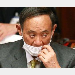 65%が「首相続けてほしくない」/(C)日刊ゲンダイ