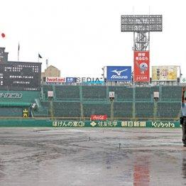 甲子園は雨天順延続きも…高校球児は「贅沢ホテル暮らし」でストレス知らず