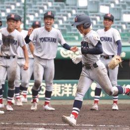 新生・横浜高校 共学化2年目での甲子園出場は経営的には上々の結果