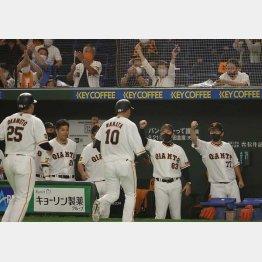 本塁打を打った中田を迎える巨人ベンチ(C)日刊ゲンダイ