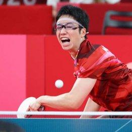 水谷隼が引退撤回 金メダリストでも卓球界の広告塔「ポスト福原愛」の荷は重い?