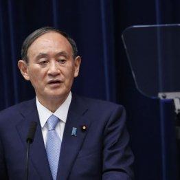 菅首相は相変わらず「お願い」連呼 2021年の精神論・根性論がニッポンをダメにしている