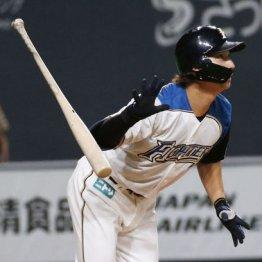 中田翔放出で日本ハム若手伸び伸び打線が爆発! 12球団ワースト貧打がウソのよう