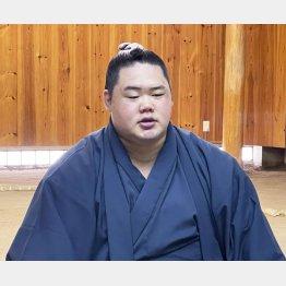 入門10年目の苦労人(日本相撲協会提供)