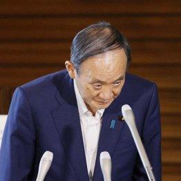 「自爆のぶん投げ」の全真相 万策つきた菅首相、辞任の必然<上>