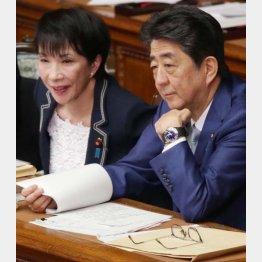 安倍前首相のお気に入り(C)日刊ゲンダイ