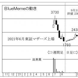 """「BlueMeme」""""自社開発""""のIT投資を支援、押し目買いの好機"""