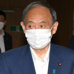 """菅首相「専念」するはずのコロナ対策は3日でたった40分…あまりの""""時短""""に怒りと呆れの声"""