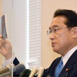 岸田文雄氏が発言修正のヘタレっぷり 森友問題「再調査は考えていない」で安倍前首相にスリ寄り