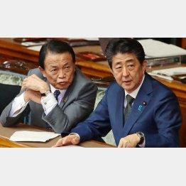 """9年間に及ぶ""""安倍・麻生支配""""に党内は不満鬱積(C)日刊ゲンダイ"""