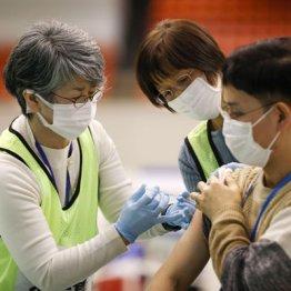 ファイザー製ワクチンは半年で「抗体量84%減」の衝撃!感染防御効果との相関関係を専門家に聞く