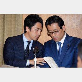 福田達夫衆院議員(右)は進次郎と仲良し(C)日刊ゲンダイ