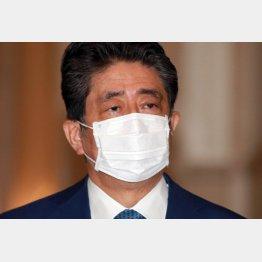 飼い犬に手を咬まれる(安倍前首相)/(C)日刊ゲンダイ