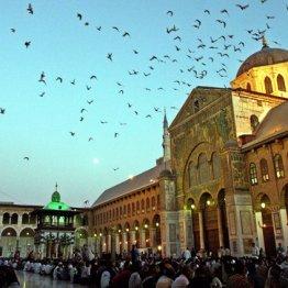 イスラームという宗教を深く理解するにはモスクを体感せよ