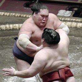 14日も危なげなしの照ノ富士