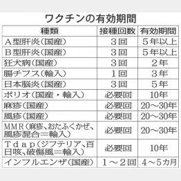 ワクチンの有効期間(C)日刊ゲンダイ