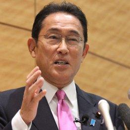 自民党総裁選の大きな問題点とは、米国が構築した日本支配の仕組みの存続だ
