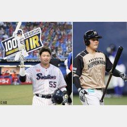 ヤクルト・村上(左)は最速100号、かたや日本ハム・清宮は一軍出場なし(C)日刊ゲンダイ