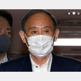 はなむけとハクづけ、次の国会に責任持てない菅首相が画策(C)日刊ゲンダイ